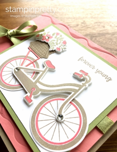 Stampin Up Bike Ride Friendship Birthday Cards Idea - Mary Fish StampinUp