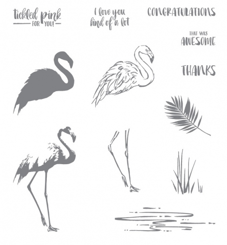Stampin Up Fabulous Flamingo Photopolymer Stamp Set