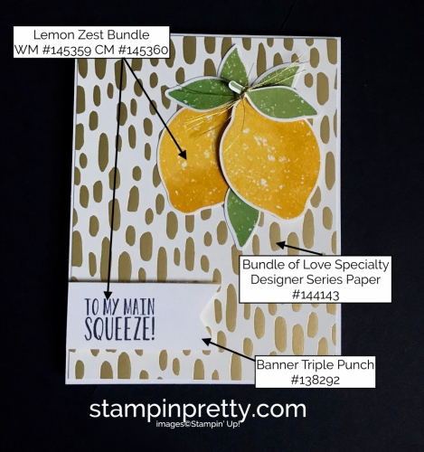 Stampin Up Lemon Zest Bundle Bundle of Love DSP Love card idea Mary Fish Stampinup SU