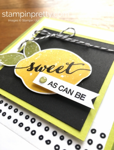 Stampin Up Lemon Zest Card Idea - Mary Fish StampinUp