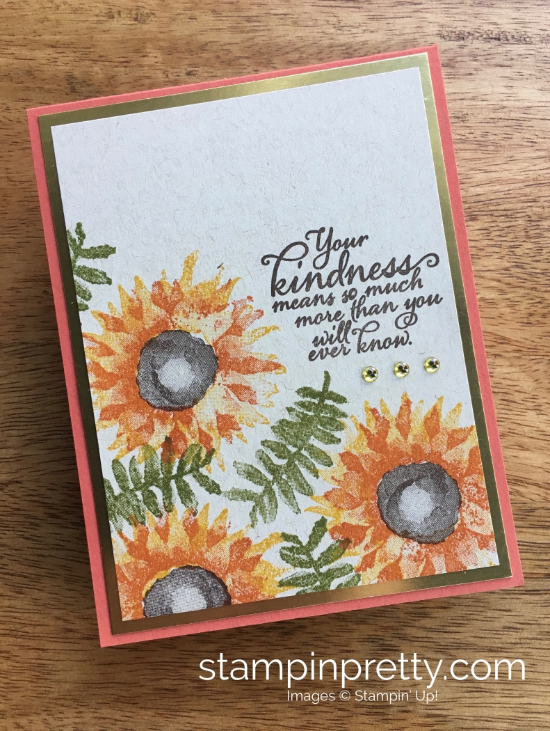 Stampin Up Painted Harvest Autumn Fall Card Ideas - Mary Fish StampinUp