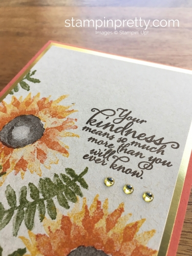 Stampin Up Painted Harvest Autumn Fall Cards Idea - Mary Fish StampinUp