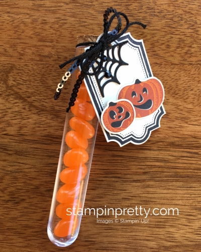 Stampin Up Patterned Pumpkin Halloween Treat Test Tubes - Mary Fish StampinUp