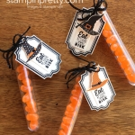 Halloween Treat Tubes & WOW! Video Tutorial!