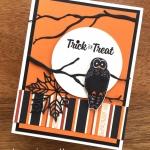 Trick or Treat Owl Halloween Card