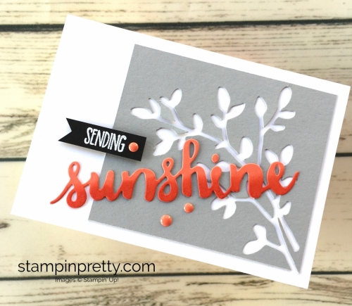 Learn how to create a simple friendship card using Stampin Up Sunshine Wishes - Mary Fish StampinUp