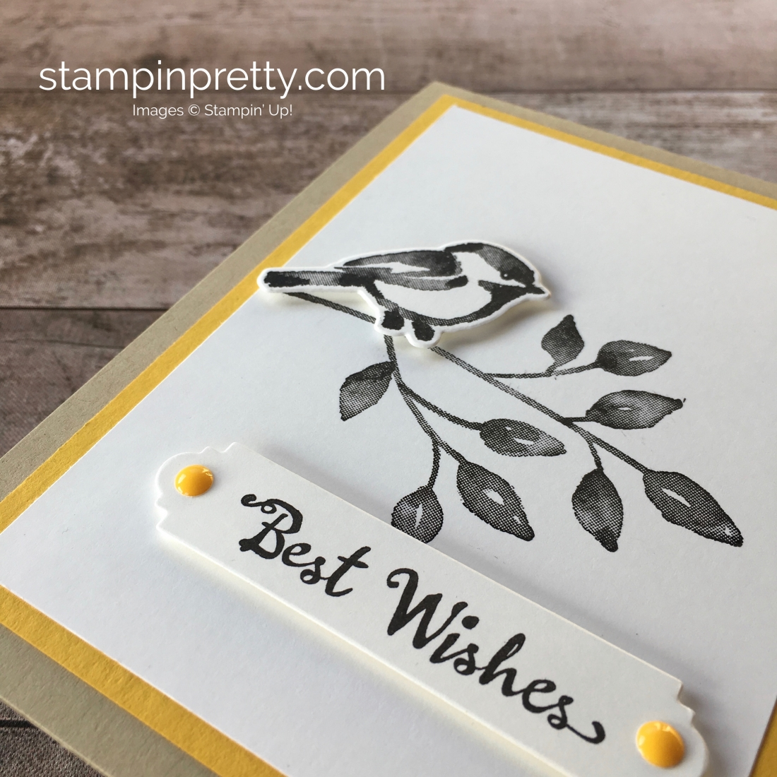 Create a simple birthday card with Stampin Up Petal Palette & Petals & More Framelits Dies - Mary Fish StampinUp Idea