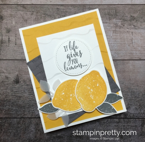 Create a friend card using Stampin Up Lemon Zest & Lemon Punch - Mary Fish StampinUp Idea