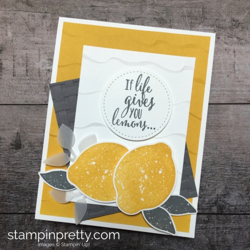 Create a friend card using Stampin Up Lemon Zest & Lemon Punch - Mary Fish StampinUp Ideas