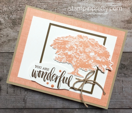 Create a simple card using Stampin Up Rooted in Nature - Mary Fish StampinUp