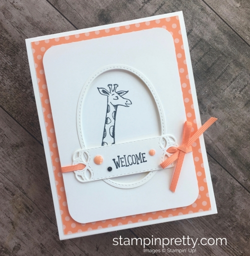 Create a simple baby card using Stampin Up Animal Outing - Mary Fish StampinUp Idea
