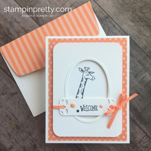 Create a simple baby card using Stampin Up Animal Outing - Mary Fish StampinUp Ideas