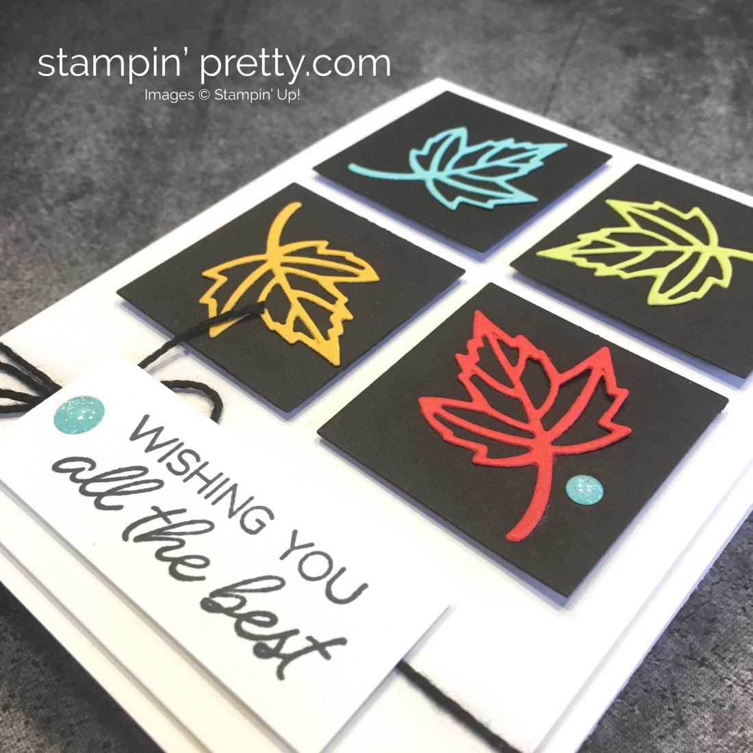 Create a simple leaf card using Stampin Up Blended Seasons Stamp Set & Stitched Seasons Dies - Mary Fish StampinUp