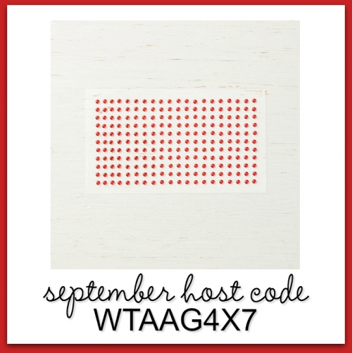 My Monthly Host Code Giveaway! | Stampin' Pretty