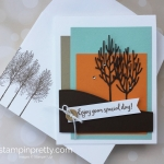 Create a simple birthday card with Winter Woods stamp set & In the Woods Framelits - Mary Fish StampinUp Ideas
