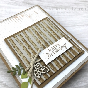 Create a simple masculine birthday card using Stampin Up Winter Woods Stamp Set - Mary Fish StampinUp rustic