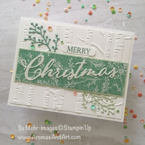 pals-paper-crafting-card-ideas-SuMohr-mary-fish-stampin-pretty-stampinup