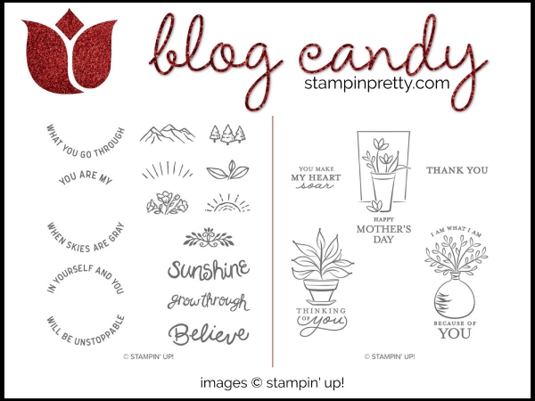 Stampin' Pretty Blog Candy