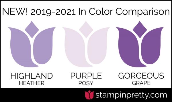 New In-Color Comparison - PURPLE POSY