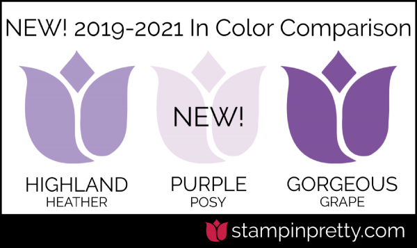 New In-Color Comparison - PURPLE POSY
