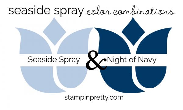Seaside Spray & Night of Navy Colored Tulips