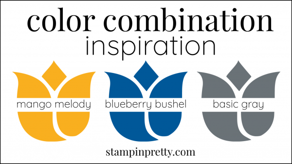 Color Combinations Mango Melody, Blueberry Bushel, Basic Gray
