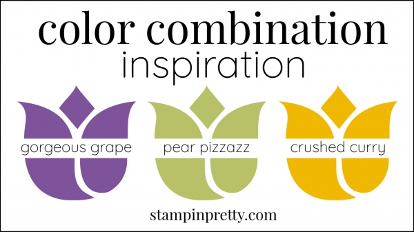 Color Combinations Gorgeous Grape, Pear Pizzazz, Crushed Curry