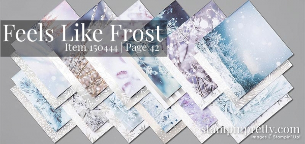 150444 Feels Like Frost Designer Series Paper by Stampin' Up!