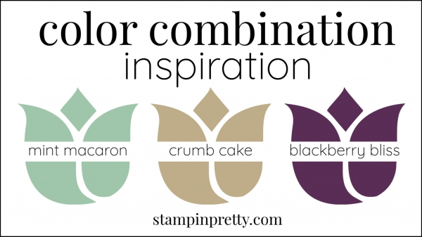 Color Combinations Mint Macaron, Crumb Cake, Blackberry Bliss