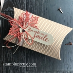 Colorful Seasons, Seasonal Layers, and Kraft Pillow Box from Stampin