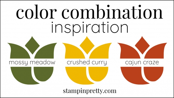 Color Combinations Mossy Meadow, Crushed Curry, Cajun Craze