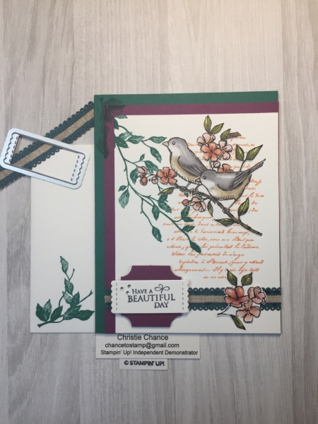 Stampin' Pretty Pals Sunday Picks 11.10 - Christie Chance