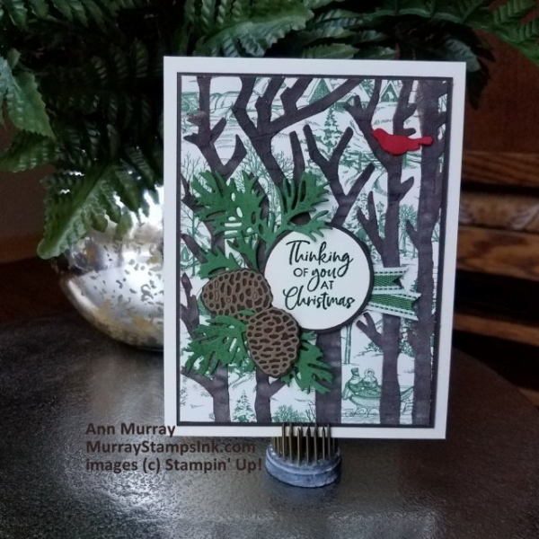Stampin' Pretty Pals Sunday Picks 11.10 - Ann Murray