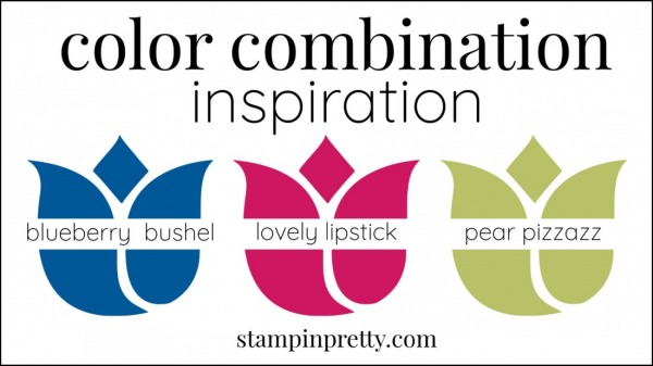 Color Combinations Blueberry Bushel, Lovely Lipstick, Pear Pizzazz