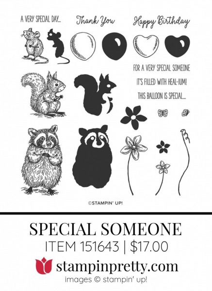 Special Someone 153816 by Stampin Up(1)