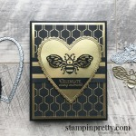Honey Bee Bundle & Golden Honey Specialty Designer Series Paper from Stampin