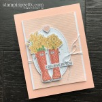 March 2020 Paper Pumpkin No Matter the Weather Alternates by Mary Fish, Stampin