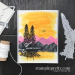 Mountain Air Bundle by Stampin