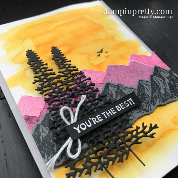 Mountain Air Bundle by Stampin' Up! CASE the Catty by Mary Fish, Stampin' Pretty