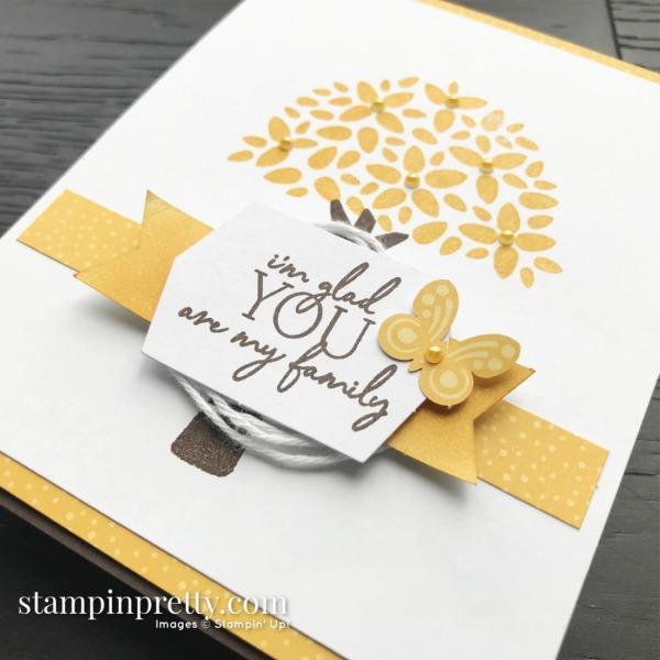 My Wonderful Family April 2020 Paper Pumpkin Alternate #3 Mary Fish, Stampin Pretty 1
