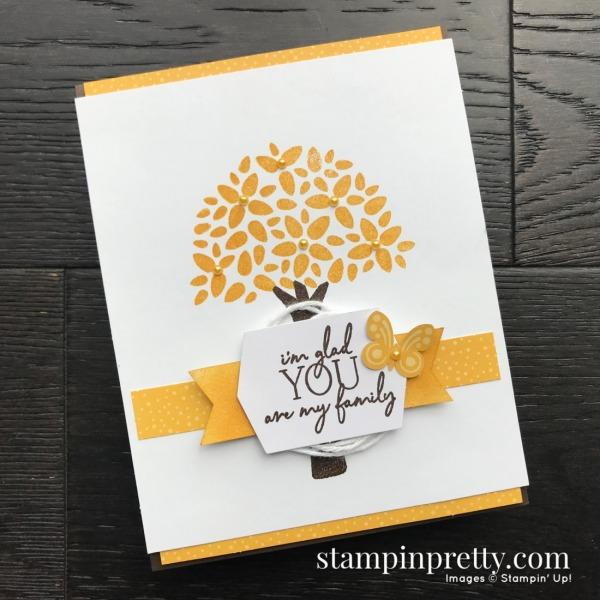 My Wonderful Family April 2020 Paper Pumpkin Alternate #3 Mary Fish, Stampin Pretty