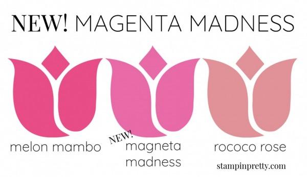 New In Color Comparison - Magenta Madness
