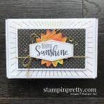Box of Sunshine June 2020 Paper Pumpkin Alternate #1 Mary Fish, Stampin