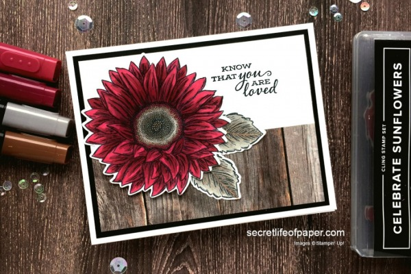 Stampin' Pretty Pals Sunday Picks 06.14- Diana Carr