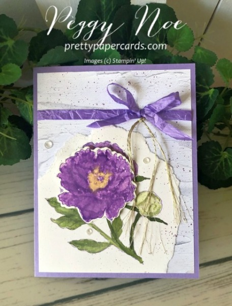 Stampin' Pretty Pals Sunday Picks 06.21- Peggy Noe