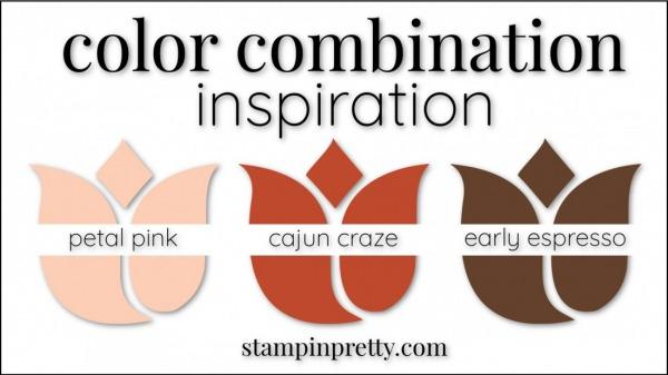 Color Combinations Cajun Craze, Petal Pink, Early Espresso