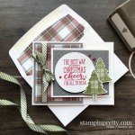 Create this card using the Christmas Means More Stamp Set by Stampin