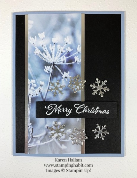 Stampin' Pretty Pals Sunday Picks_10.18.20_Karen Hallam