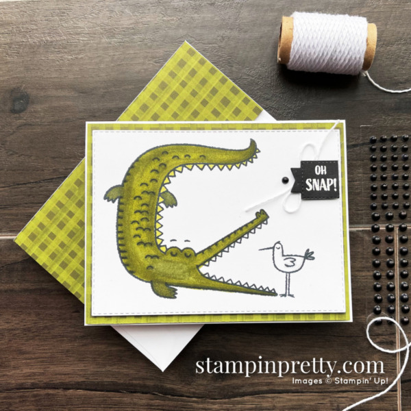 Oh Snap Stamp Set from Stampin' Up! Card by Mary Fish, Stampin' Pretty