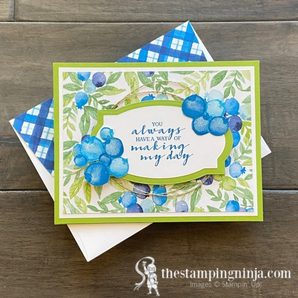 Stampin' Pretty Pals Sunday Picks - 01.17.21 - Melissa Seplowitz